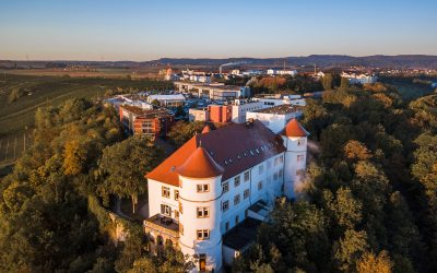 Hohenstein Celebrates 75 Years