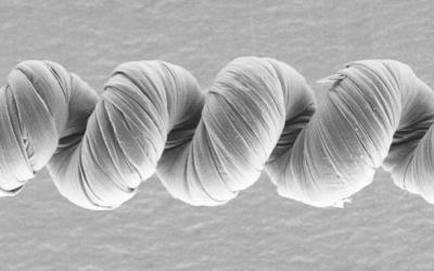 Nanotube Yarn Makes Strong Bionic Muscles